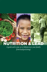 Nutrition Lead