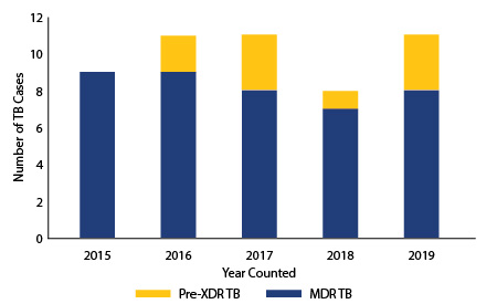 Figure 5 Multidrug-resistant TB Case Counts in Texas, 2013-2016. Data in Table 9 below.