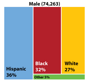 Figure 2: Texans living with HIV by race/ethnicity and sex at birth, 2018 II