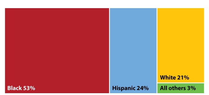 Figure 22:  Race/ethnicity of 25-44-year-olds in Texas with HIV as the cause of death, 2016