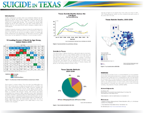 Texas suicide map