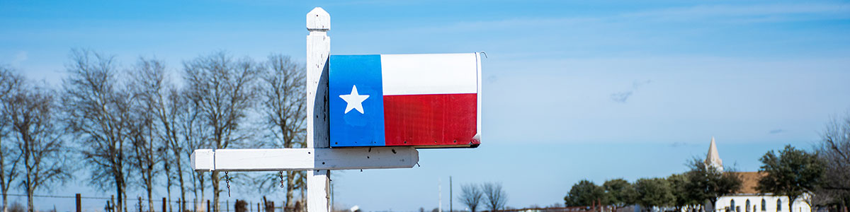 Mailbox painted with a Texas flag.