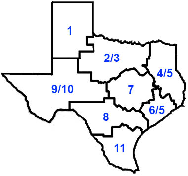 Texas Health Service Regions Map