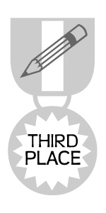 Medal - Third Place Writing