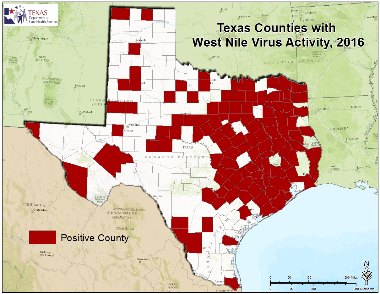 Texas West Nile Virus Maps - Map of tx
