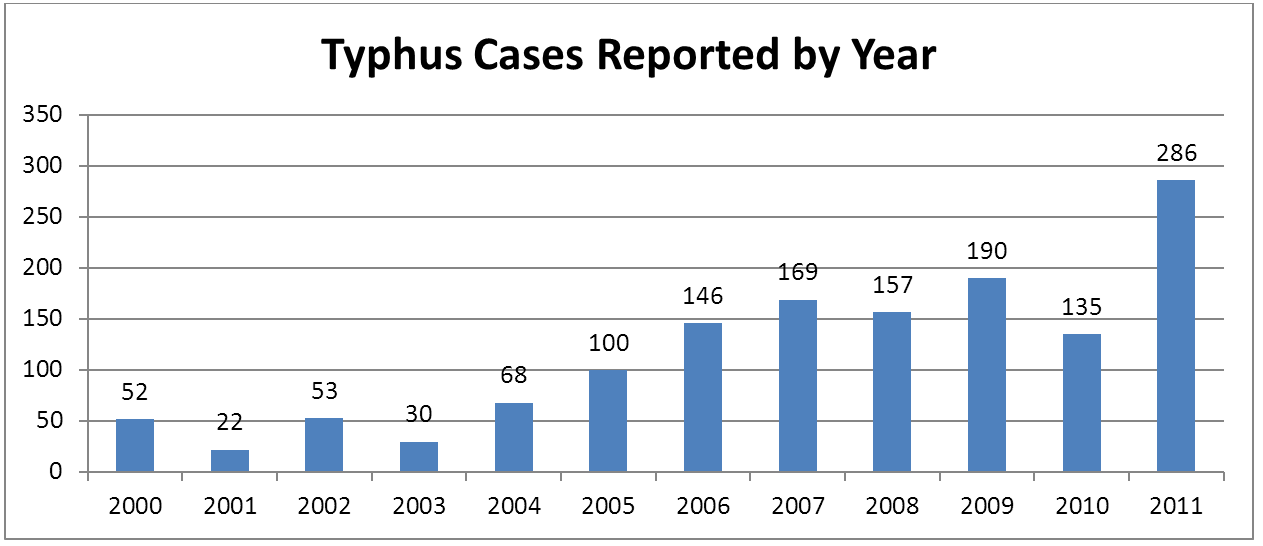 Typhus Cases By Year