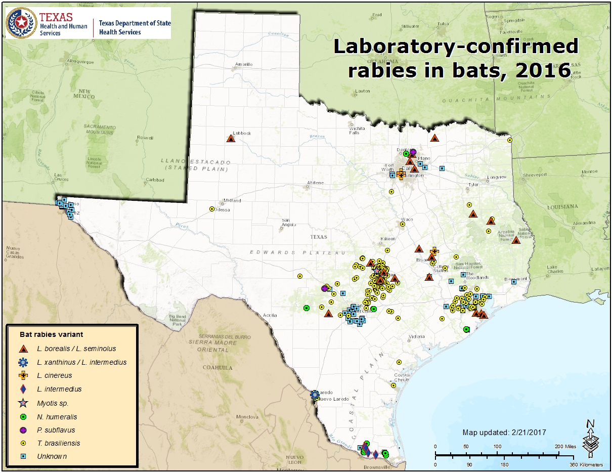 Technology Management Image: Rabies Maps For 2016